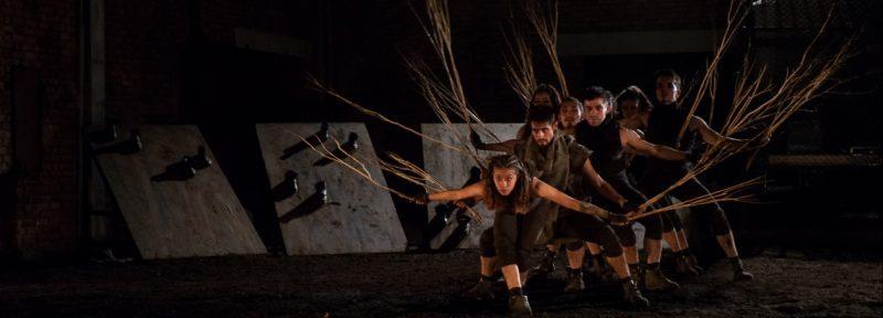 Idartes está en la 5ª Bienal Internacional de Danza de Cali